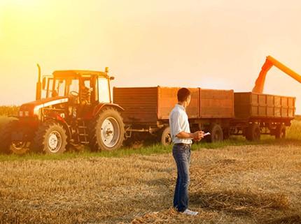 Ativo Biológico e Produtos Agrícolas